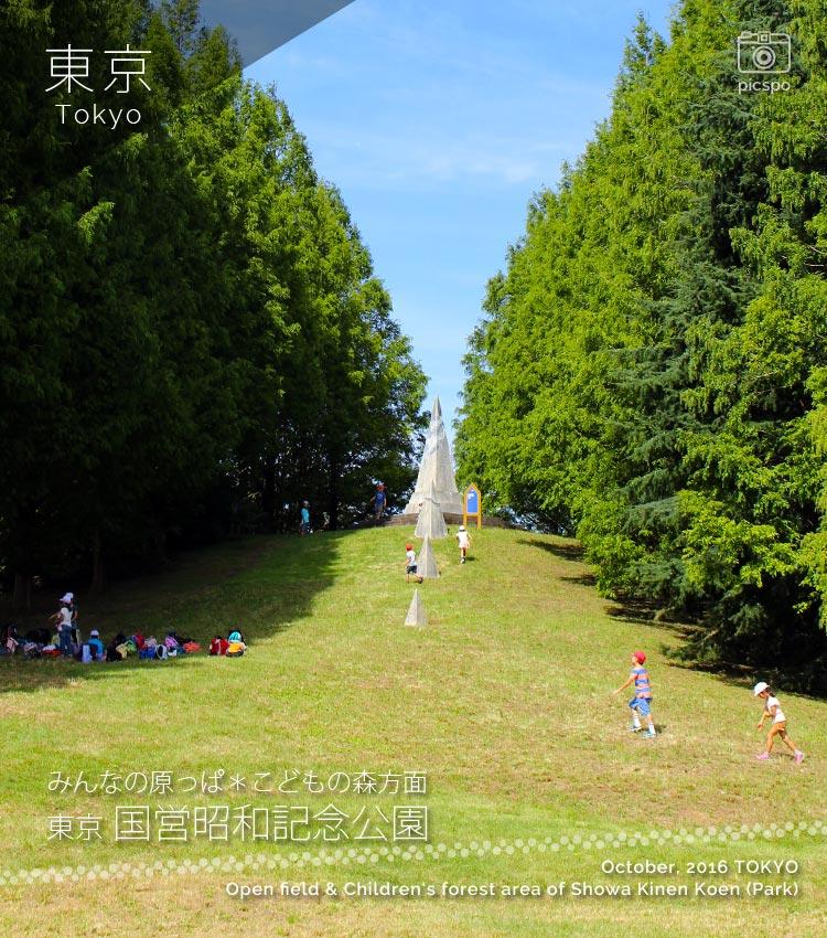 公園 昭和 記念