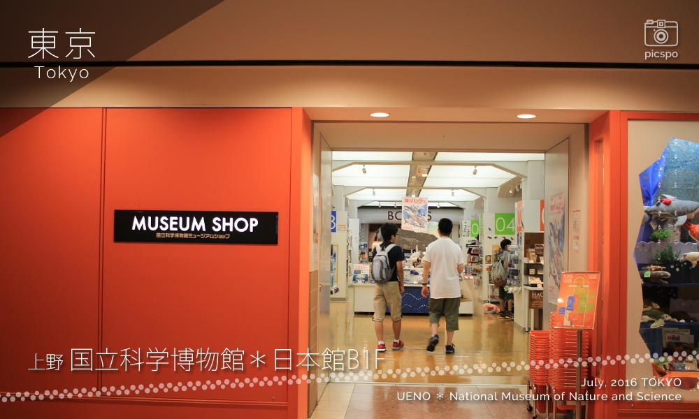 National Museum of Nature and Science : Museum shop