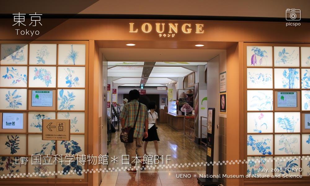 National Museum of Nature and Science : Lounge space